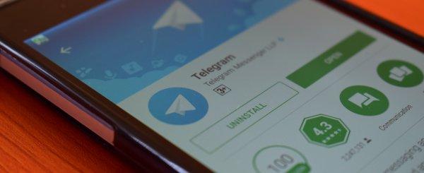 Экс-замглавы Роскомнадзора завел Telegram-канал после блокировки месседжера